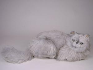Stuffed persian cat toy